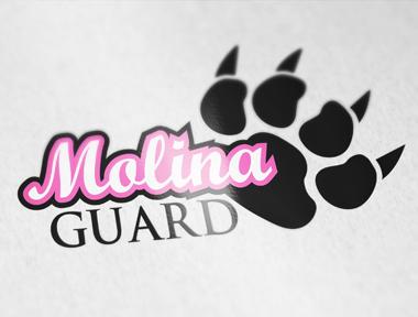 Charte graphique – Molina Guard